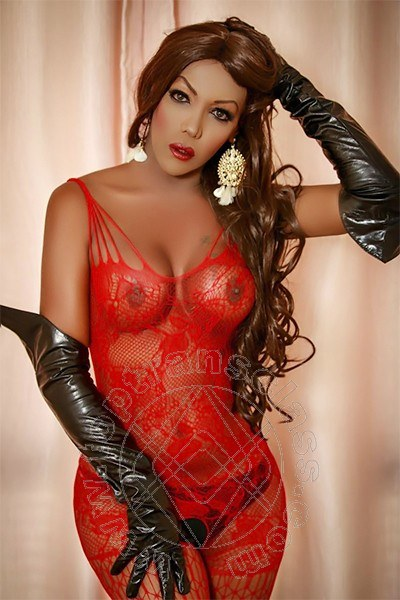 Miranda Fox  MONTEBELLUNA 3475518871